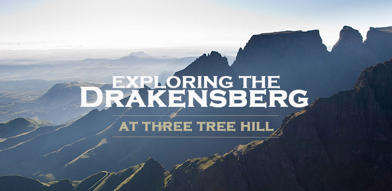 A Holiday in the Berg at Three Tree Hill