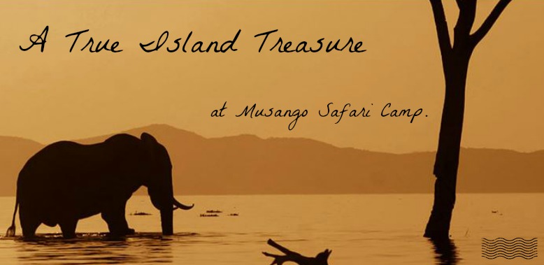 A True Island Treasure at Musango Safari Camp