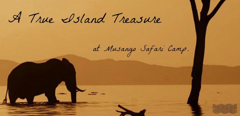 A True Island Treasure at Musango Safari Camp