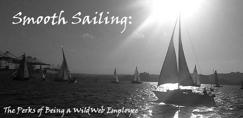 Smooth Sailing- The Perks of Being a WildWeb Employee