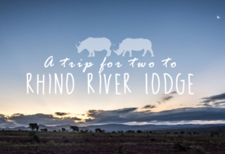 Rhino River Lodge Photo Blog