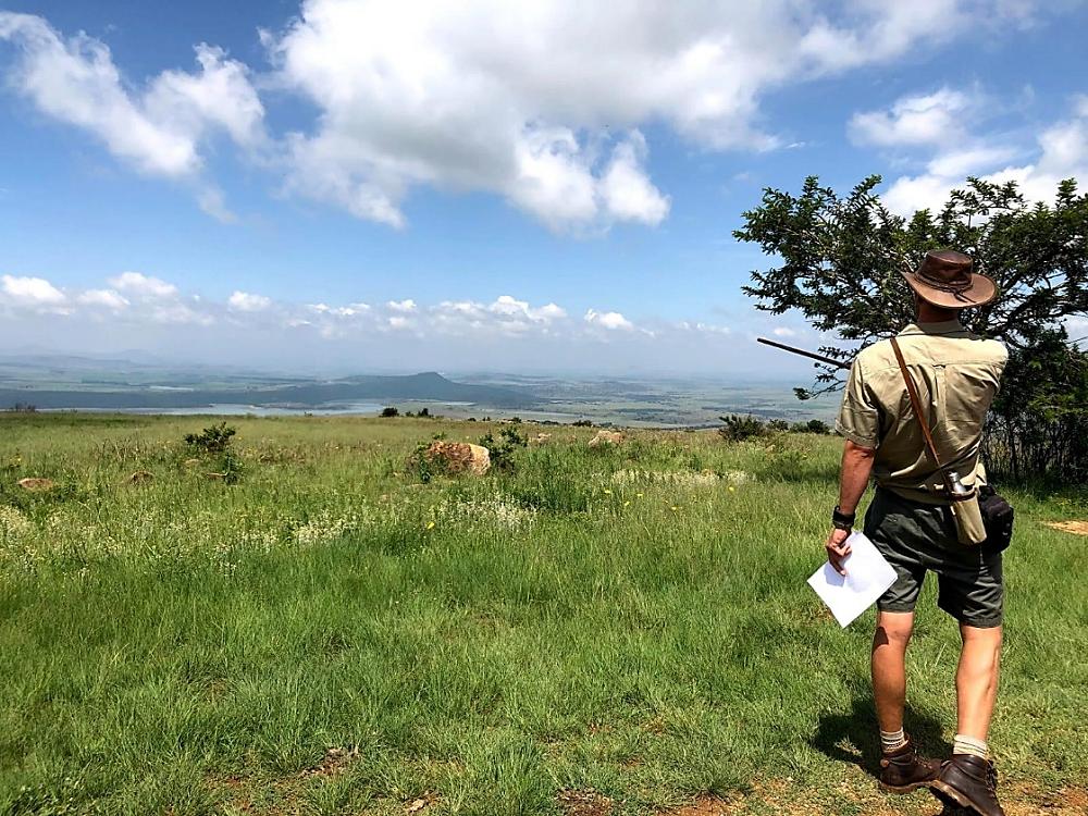 WildWeb, Spionkop Hill, South African War, Classic Safari Africa, Guided Bush Walk
