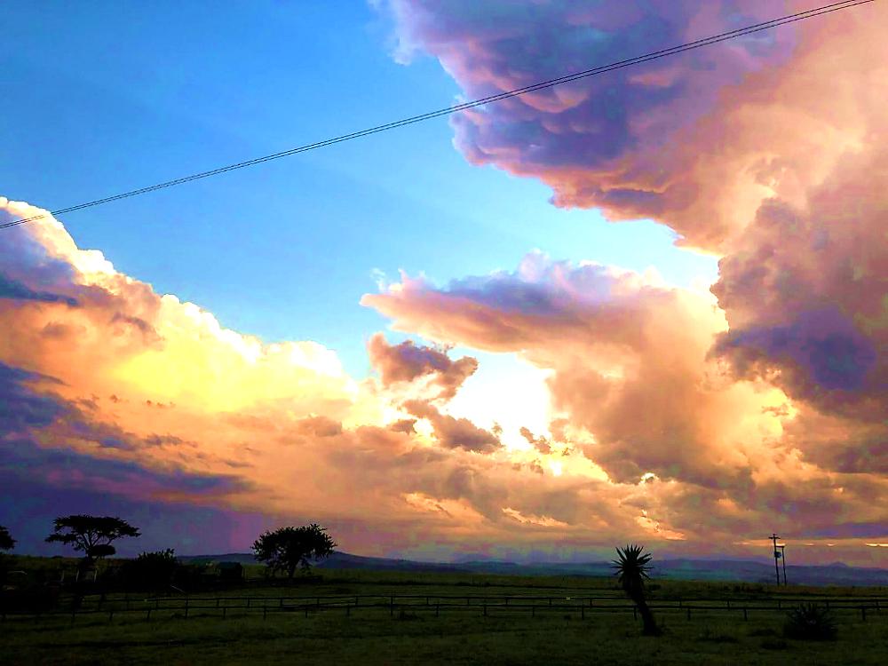 WildWeb, Classic Safari Africa. South African Sunset