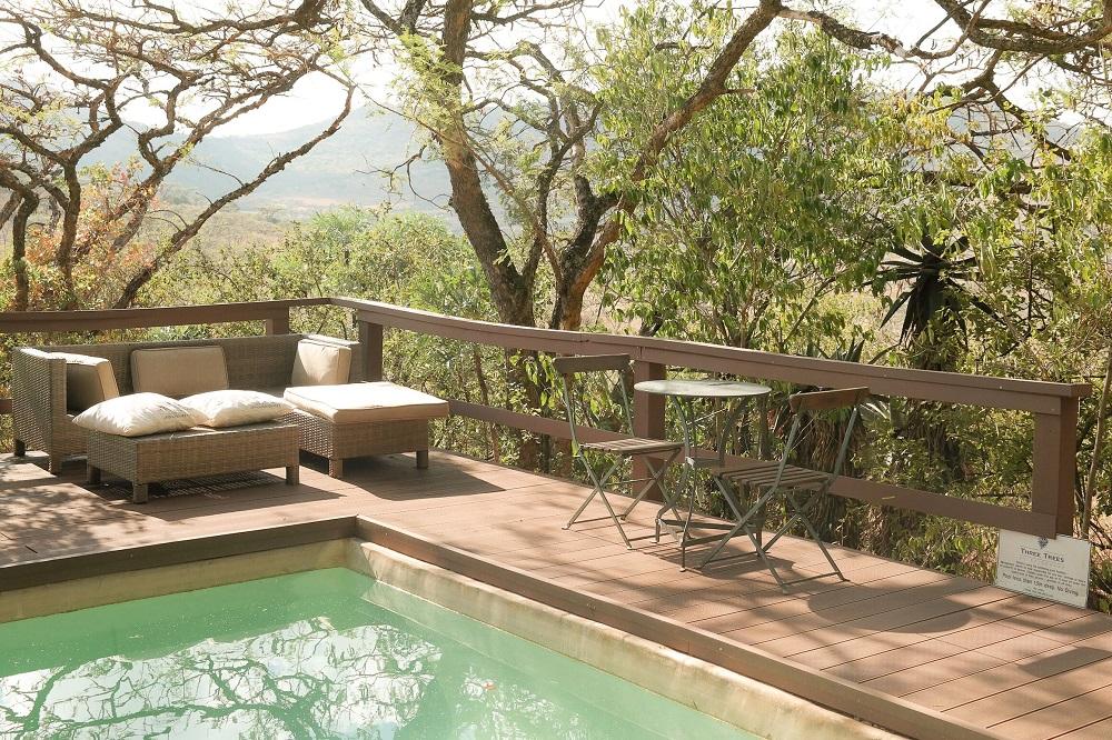 WildWeb, Three Tree Hill, Classic Safari Africa
