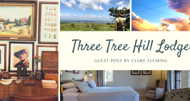 WildWeb, Three Tree Hill, Classic Safari Africa