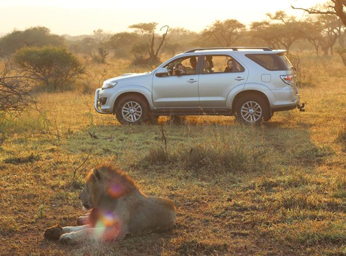 self-drive safari KwaZulu Natal