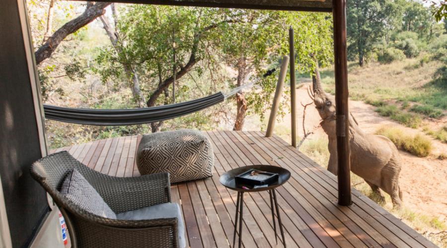 Garonga Safari Camp, Big 5 safari South Africa